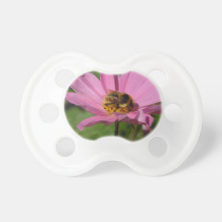 Busy Bee on Cosmo Pacifier