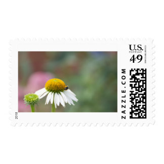 Busy Bee on Flower Postage