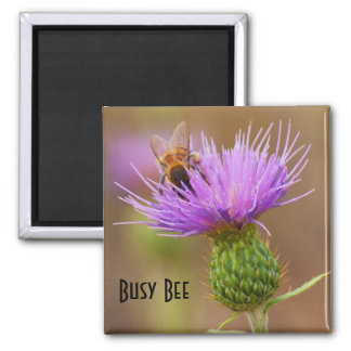 Busy Bee On Purple Thistle Close Up Photograph Magnet
