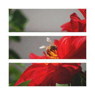 Busy Bee on Red Dahlia Canvas