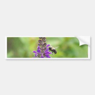 Busy Bee on the Purple Flower Bumper Stickers