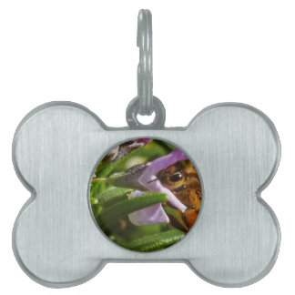 Busy Bee Pet ID Tag