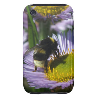 Busy Bee Tough iPhone 3 Case