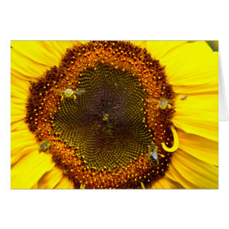 Busy Bee's Card