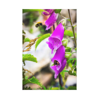 Busy Bees in Scotland Canvas Print