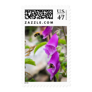 Busy Bees in Scotland Stamp