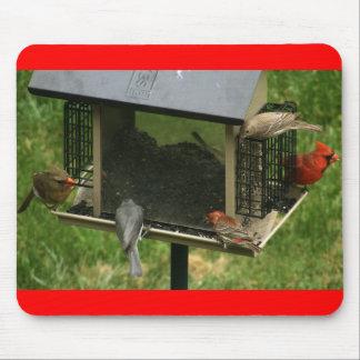 Busy Bird Feeder Mouse Pad