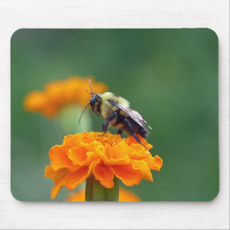 Busy Bumble Bee Mouse Pad