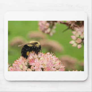 Busy Bumble Bee on Pink Crownvetch Blooms Mouse Pad