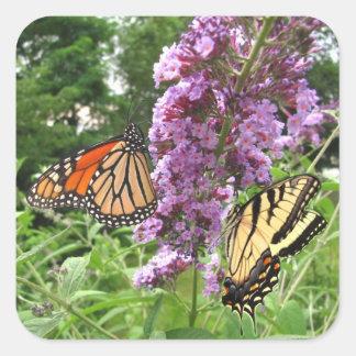 Busy Butterflies ~ sticker