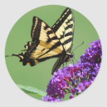 Busy Butterfly Stickers