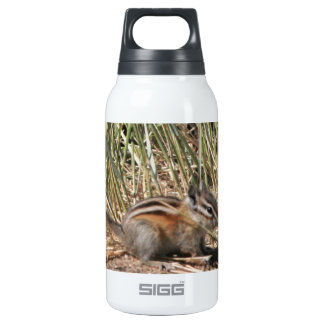Busy Chipmunk Insulated Water Bottle