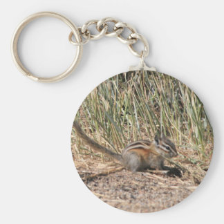 Busy Chipmunk Keychain