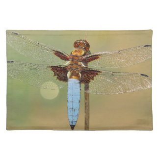 Busy Dragonfly Cloth Placemat
