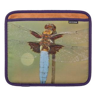 Busy Dragonfly iPad Sleeve