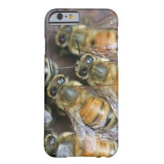Busy honey bees barely there iPhone 6 case