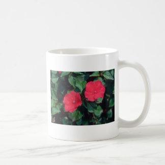 Busy Lizzy (Impatiens Wallerana) flowers Mug