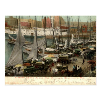 Busy Scene Along the Wharves, Baltimore, MD 1905 Postcard