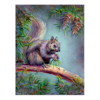 BUSY SQUIRREL by SHARON SHARPE Postcard