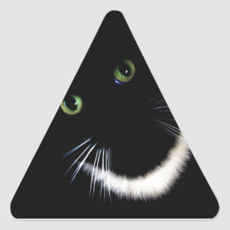 But HOW Can You See Me? Triangle Sticker