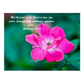 But the fruit of the Spirit is love, joy, peace, l Post Card