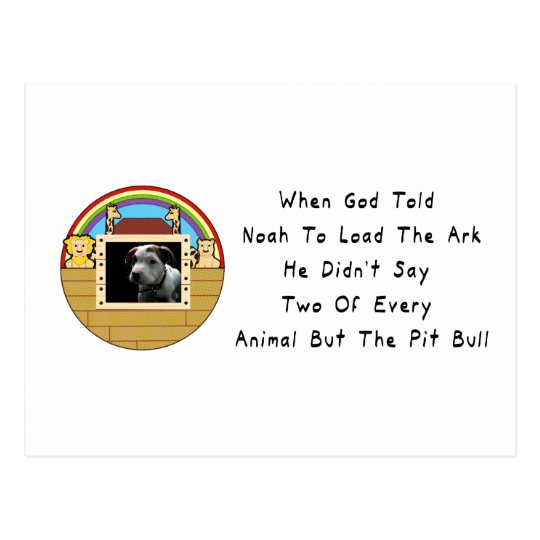 But The Pit Bull Postcard
