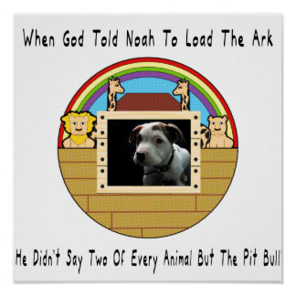 But The Pit Bull Poster
