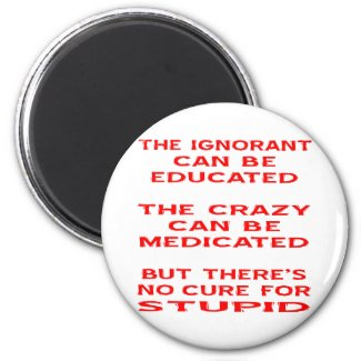 But There's No Cure For Stupid Fridge Magnet