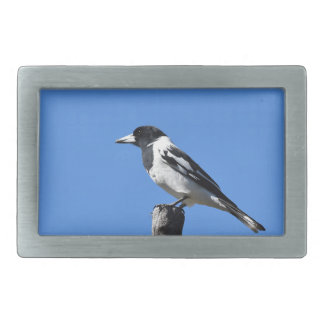 BUTCHER BIRD ON A POST IN RURAL AUSTRALIA RECTANGULAR BELT BUCKLE