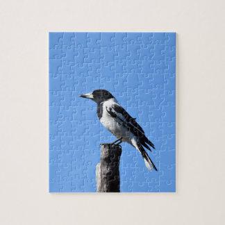 BUTCHER BIRD RURAL QUEENSLAND AUSTRALIA JIGSAW PUZZLE