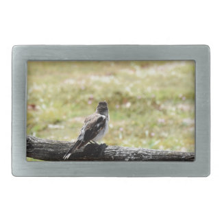 BUTCHER BIRD RURAL QUEENSLAND AUSTRALIA RECTANGULAR BELT BUCKLE