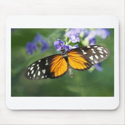Buttefly -06173 tapetes de ratones