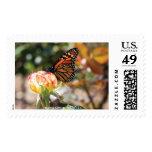 Buttefly anaranjado en color de rosa - 20 sellos