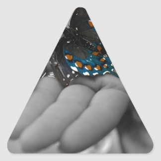Buttefly in Hand Triangle Sticker