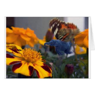 Buttephant Card