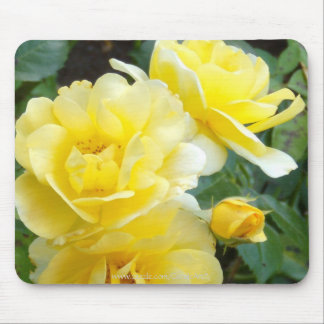 Butter Cream Roses Mouse Pads