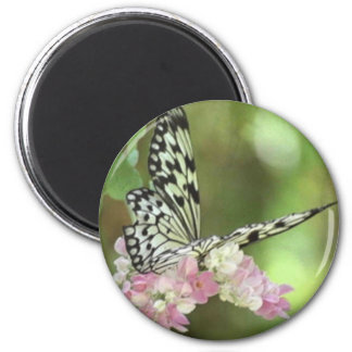 BUTTER FLY 2 INCH ROUND MAGNET