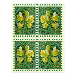 Butter 'n Eggs Wildflower Coordinating Items Postcard