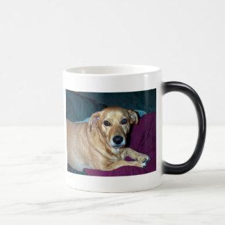 Butterbean, Butterbean, Butterbean,Best little ... Magic Mug