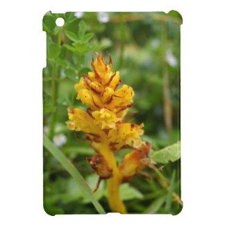 Butterbur broom (Orobanche flava) Case For The iPad Mini
