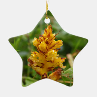 Butterbur broom (Orobanche flava) Ceramic Ornament