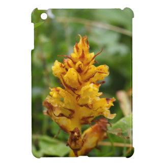 Butterbur broom (Orobanche flava) iPad Mini Cover