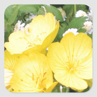 Buttercup and Babies Breath Square Sticker