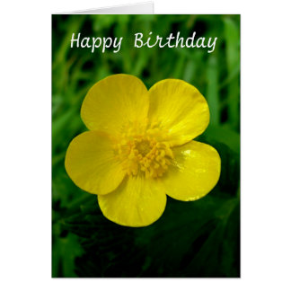 Buttercup - Birthday Card