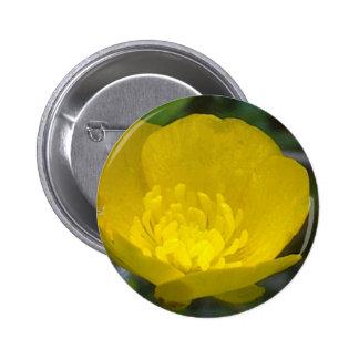 Buttercup Button