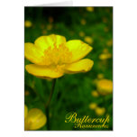 Buttercup Card Wild Flowers Customized Cards Greeting Card