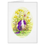 Buttercup Easter Cards