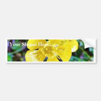 Buttercup Flower Bumper Sticker