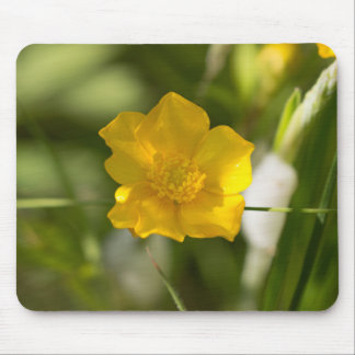 Buttercup Flower Mouse Pad