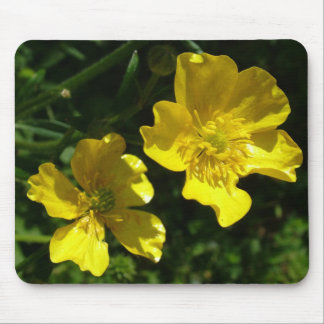 Buttercup flowers mouse pad
